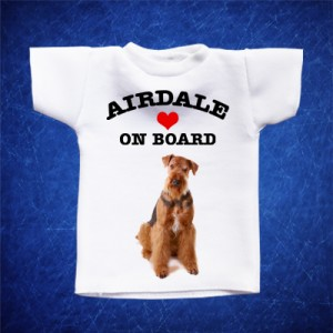 Airdale 1