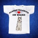 Alaskan Malamute 1