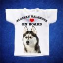 Alaskan Malamute 2