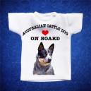 Australian Cattledog 1
