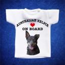 Australian Kelpie 1