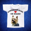 Australian Silky 1