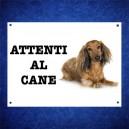 Duchshund 3