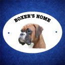 Boxer 5